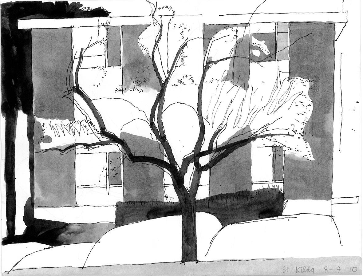 'Winter Blossom, Botanic Gardens, St. Kilda' ink & wash